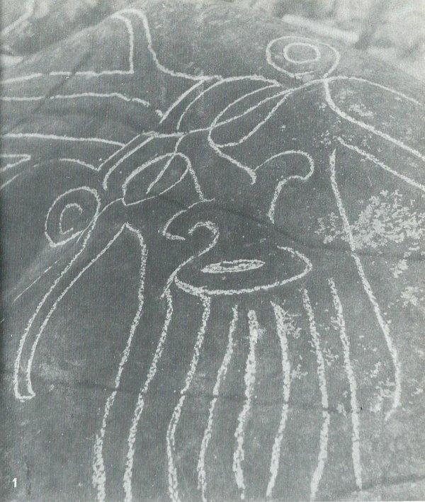Pierre à pétroglyphes au fond du Rano Kau - 4