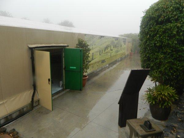 "Visite de l'exposition permanente ""Rapa Nui"" à Güimar - Tenerife (18/10/2014) - 4"