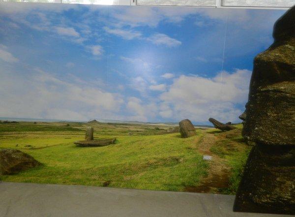 "Visite de l'exposition permanente ""Rapa Nui"" à Güimar - Tenerife (18/10/2014) - 9"