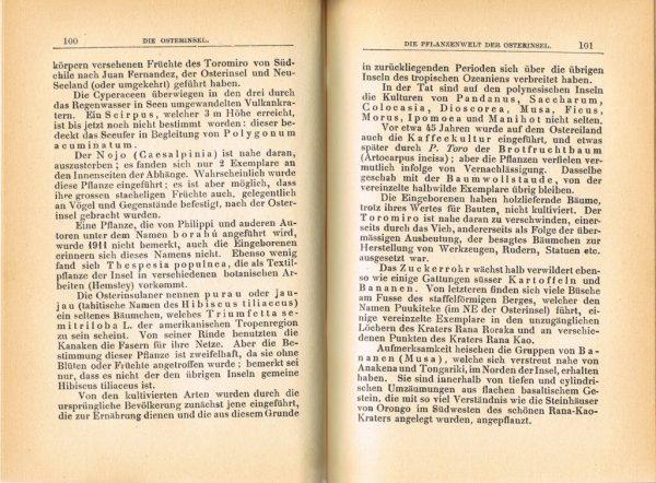 """Le livre """"Die Osterinsel"""" de Walter Knoche (1925) est libre de droit depuis le 01/01/2016 - 9"""