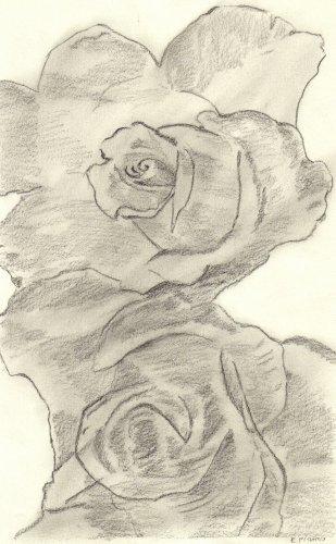 des fleurs . . .