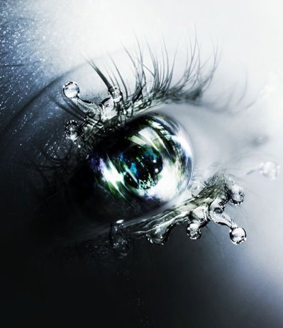 Oeil (modèle utilisé)