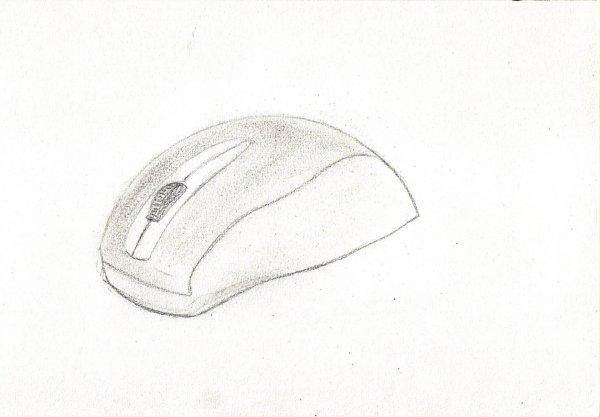 souris informatique