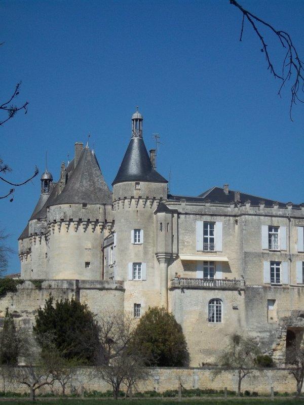 Jonzac : Le château