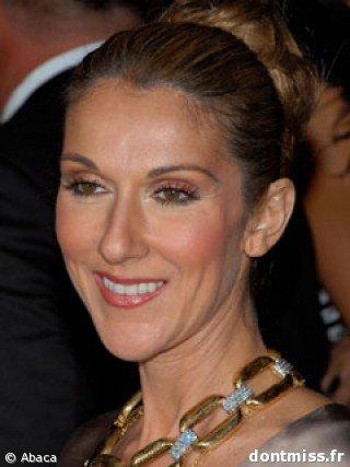Céline Dion : L'album Falling Into You