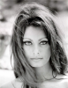 Sophia Loren : Citation