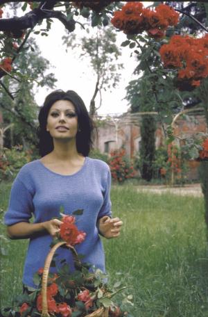 Sophia Loren : Citation