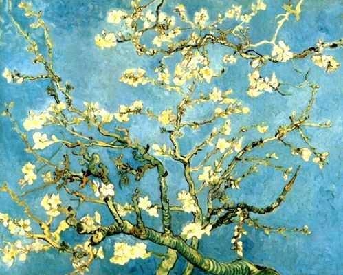 Vincent Van Gogh : Amandier en fleurs
