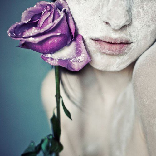 Arthur SCHNITZLER : la rose