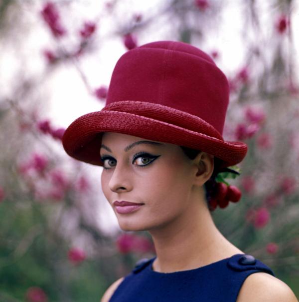 Sophia Loren : Une des actrices incontournables