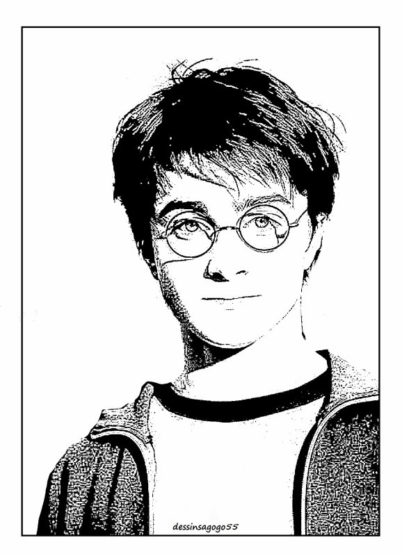 Harry Potter : dessinsagogo55