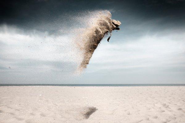 Claire Droppert - Sand Creatures series