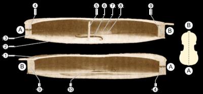 Violon 6