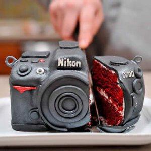 Les usages de la photographie