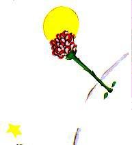 Le Petit Prince : CHAPITRE VII