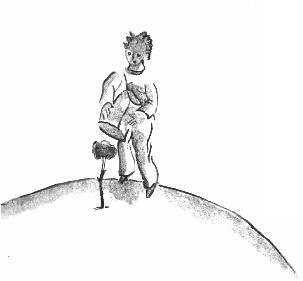 Le Petit Prince : CHAPITRE VIII