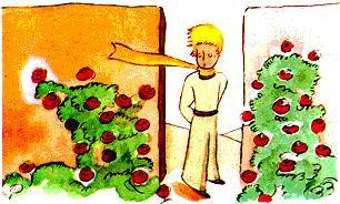 Le Petit Prince : CHAPITRE XX