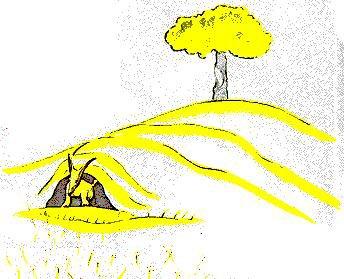 Le Petit Prince : CHAPITRE XXI