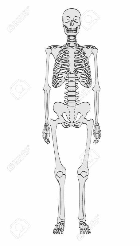 C'est quoi un squelette dans un placard ?