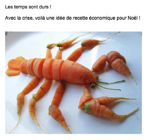 T'as des carottes j'espère ...
