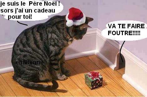 Noël : Au jeu du chat et de la souris