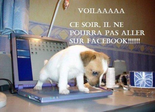 Facebook ce soir ?