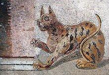 Chat : Les Égyptiens de l'Antiquité