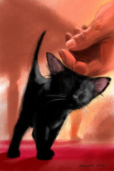 Chat : Le chat dans la littérature
