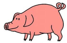 Cochon : Expression populaire... Le temps de cochon