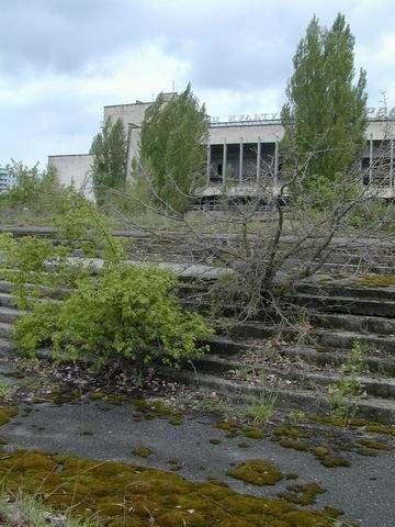 Pripyat  : Quand la nature reprend le dessus (Tchernobyl)