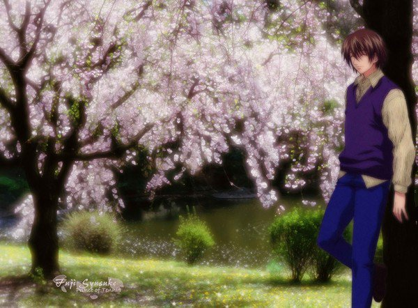 Manga : Sous les cerisiers