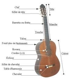 Guitare : Tête