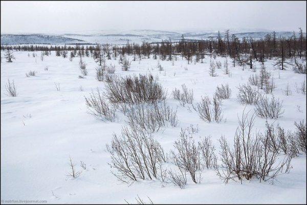Péninsule de Yamal