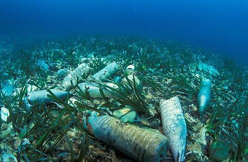 Mer : Notre pollution