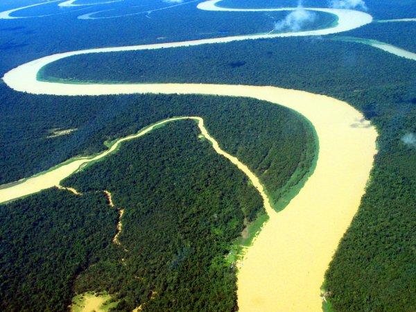 Amazonie : Histoire