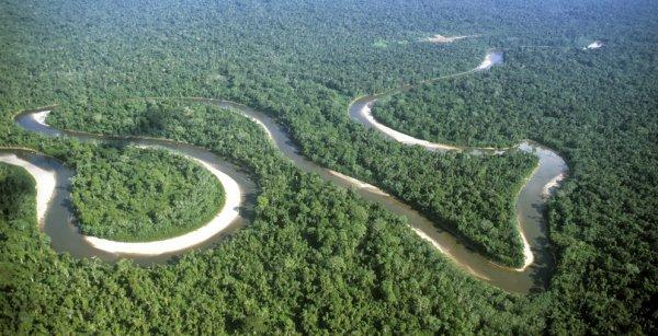 Amazonie : Généralités