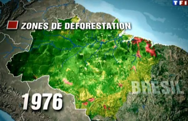 Amazonie : Déforestation