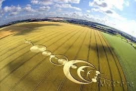 Cercle de culture (Crop circle) : 5000 de ces formes sont apparues dans 30 pays