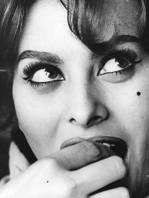 Sophia Loren : Marcello Mastroianni