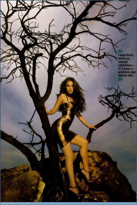 Megan Fox : Carrière