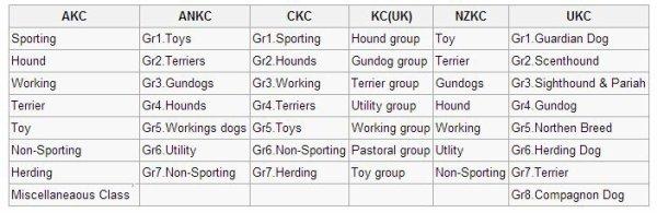 Chien : Liste des races de chiens