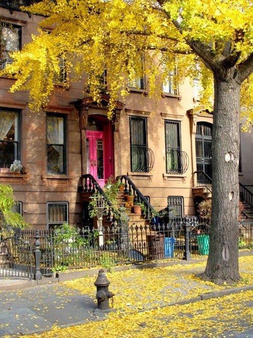 Brooklyn, New York