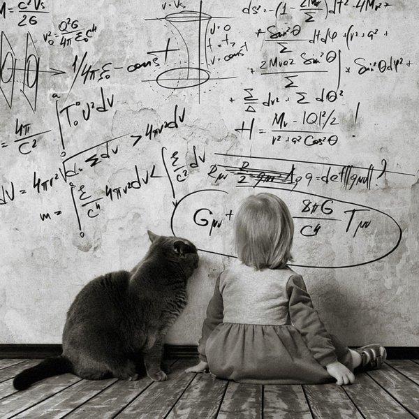 Une série de photographies raconte l'amitié d'une petite fille et de son chat