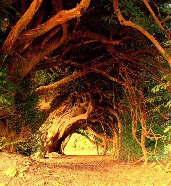 Les plus beaux tunnels naturels