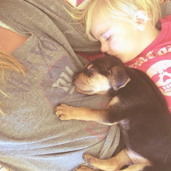 La douce amitié d'une petite fille et son chien