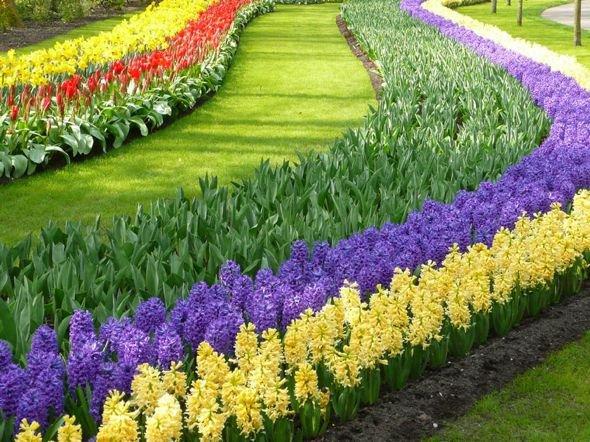 Keukenhof Pays Bas : Le plus grand Jardin de Fleurs de Printemps au Monde
