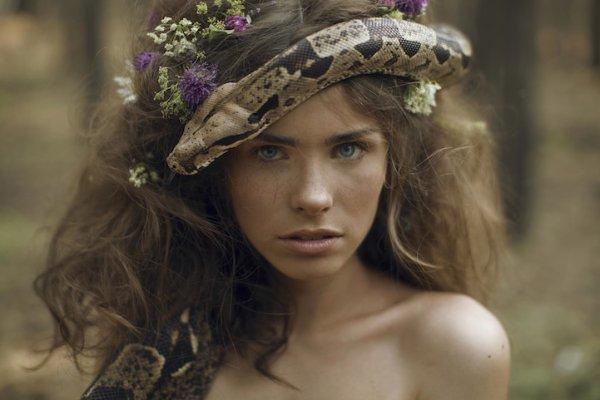 Katerina Plotnikova : Magnifiques Contes Visuels