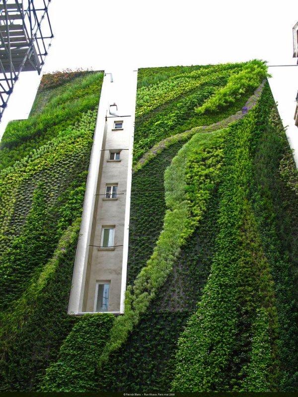 Jardins verticaux