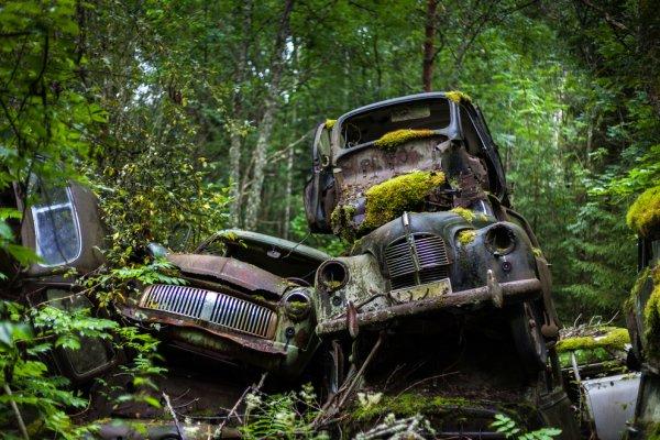 Svein Nordrum : Un vieux cimetière de voitures en Suède