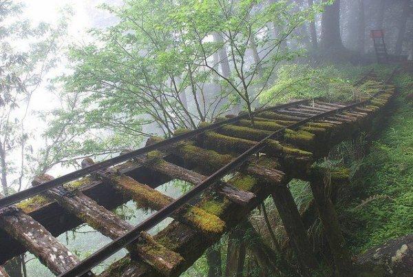 Rail Abandonné, au Japon